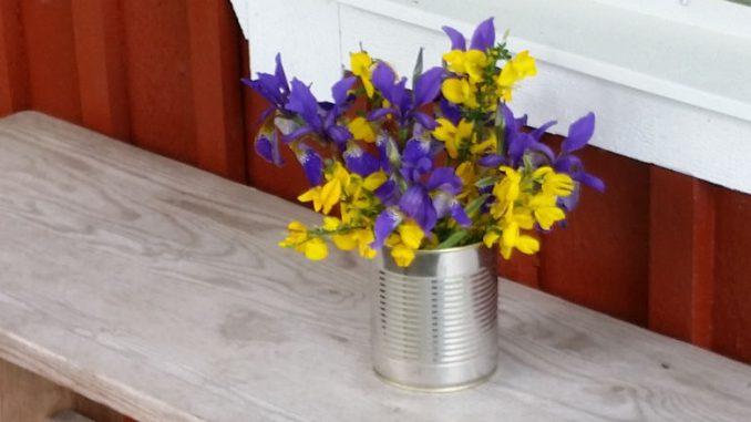 Blumen vor unserer Haustür.