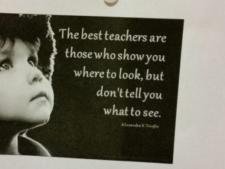 """The best teachers are those who show you where to look, but don't tell you what to see."" (Alexandra K.Trenfor)"