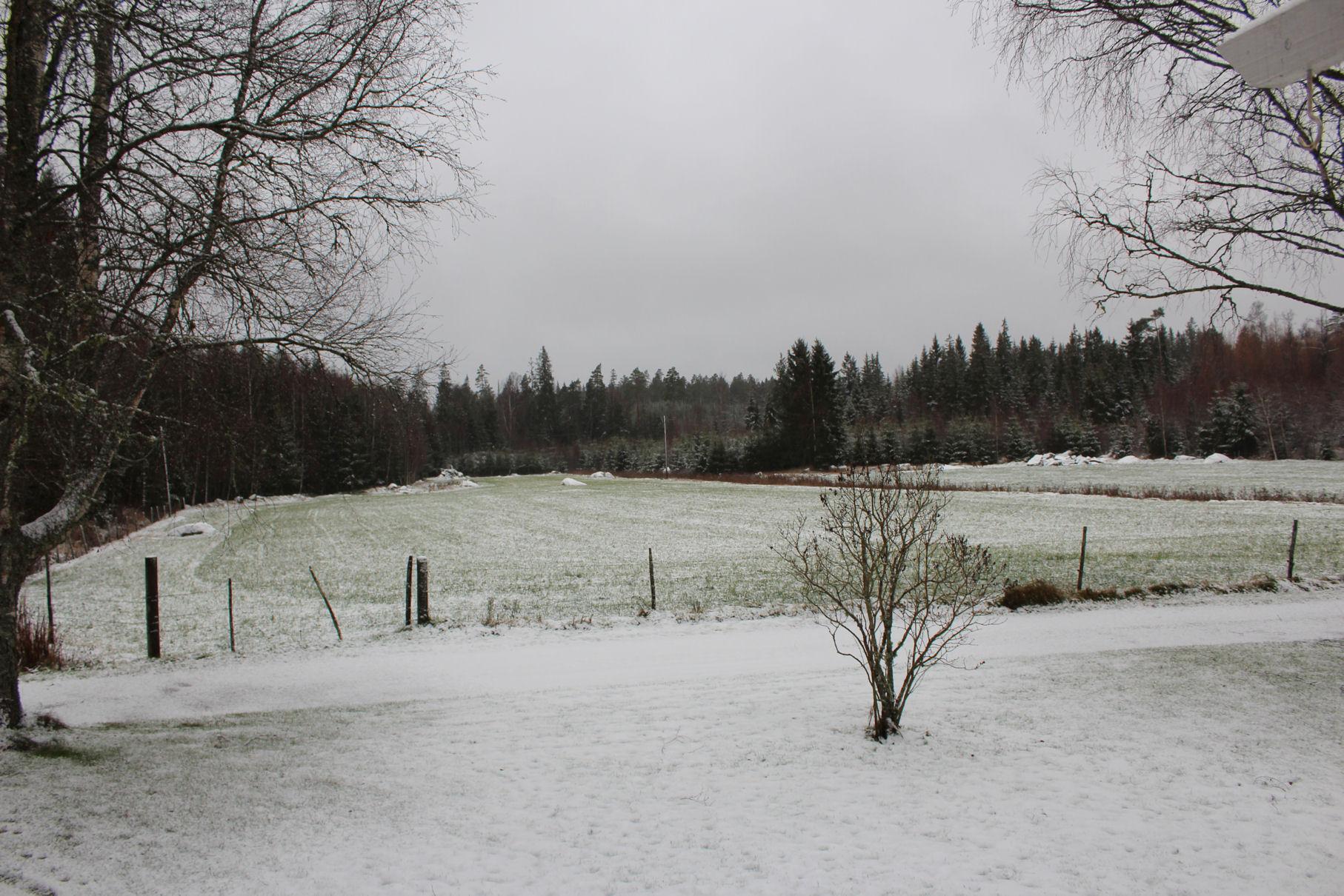 Schnee in Schweden
