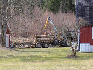 Traktor lädt Brennholz ab.