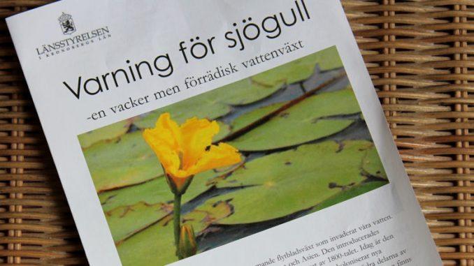 Sjögull-Flyer vom Länsstyrelsen, der schwedischen Provinzialregierung.
