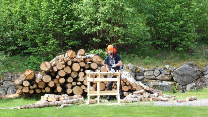 Mein Mann macht Brennholz im schwedischen Garten.