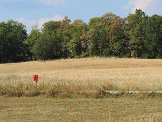 Ein völlig vertrocknetes Feld in Schweden