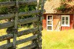 SvenskaNyheter_2020-08-13_Schweden_LinnesRashult_05